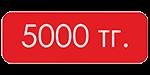 5000 тг.